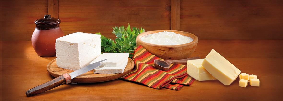 Bulgarischer Schafskäse 1 Der berühmteste bulgarische Käse ist der Schafskäse mit dem Bakterium Lactobacillus Bulgaricus, der NUR in Bulgarien auf natürliche Art und Weise lebt und wird nicht künstlich hergestellt.