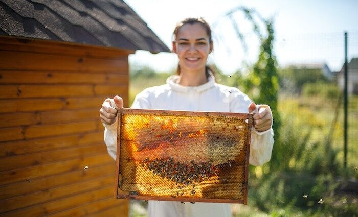 Bienenhonig 2 Bulgarien ist eines der Länder mit der größten und einzigartigsten Heilkräutervielfalt und Honigpflanzen weltweit.
